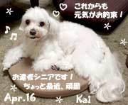kai-041916.jpg
