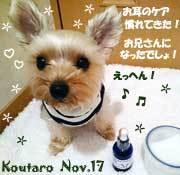 koutaro-110217-1.jpg