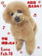 love-022318.jpg