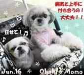 ohagi_momo-062416.jpg