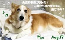 pan-080817.jpg