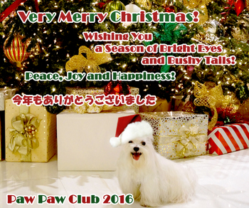 ppc-christmas_card-2016.jpg