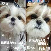 rina_rupi-022517.jpg