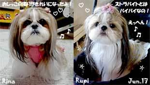 rina_rupi-060517.jpg