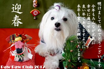 2017_PPC_onenga_card.jpg