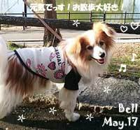 bell-050517.jpg