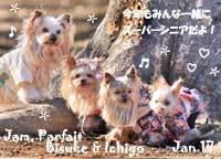 jam_parfait_bisuke_ichigo-010117-2.jpg