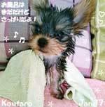 koutaro-011217-1.jpg