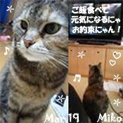 miko-031619-compressor.jpg