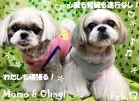 momo_ohagi-020417.jpg
