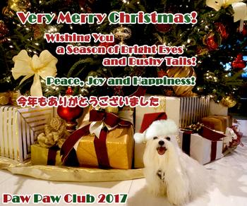ppc-christmas_card-2017.jpg