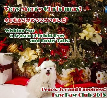 ppc-christmas_card-2018-compressor.jpg