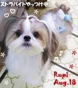 rupi-080518.jpg